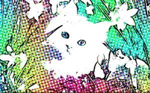 20131019-064645.jpg